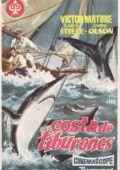 Борцы с акулами