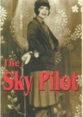 Воздушный пилот