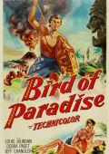 """Постер 2 из 4 из фильма """"Райская птица"""" /Bird of Paradise/ (1932)"""