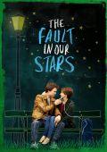 "Постер 7 из 7 из фильма ""Виноваты звезды"" /The Fault in Our Stars/ (2014)"