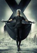 """Постер 48 из 51 из фильма """"Люди Икс: Дни минувшего будущего"""" /X-Men: Days of Future Past/ (2014)"""