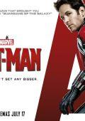 """Постер 11 из 20 из фильма """"Человек-муравей"""" /Ant-Man/ (2015)"""