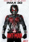 """Постер 20 из 20 из фильма """"Человек-муравей"""" /Ant-Man/ (2015)"""