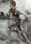 """Постер 14 из 21 из фильма """"Бегущий в лабиринте"""" /The Maze Runner/ (2014)"""