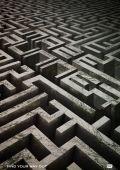 """Постер 7 из 21 из фильма """"Бегущий в лабиринте"""" /The Maze Runner/ (2014)"""
