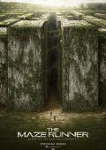 """Постер 3 из 21 из фильма """"Бегущий в лабиринте"""" /The Maze Runner/ (2014)"""