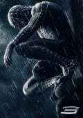 """Постер 4 из 9 из фильма """"Человек-паук 3: Враг в отражении"""" /Spider-Man 3/ (2007)"""