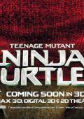 "Постер 29 из 31 из фильма ""Черепашки-ниндзя"" /Teenage Mutant Ninja Turtles/ (2014)"
