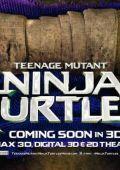 "Постер 30 из 31 из фильма ""Черепашки-ниндзя"" /Teenage Mutant Ninja Turtles/ (2014)"