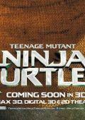 "Постер 31 из 31 из фильма ""Черепашки-ниндзя"" /Teenage Mutant Ninja Turtles/ (2014)"