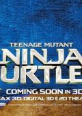 "Постер 28 из 31 из фильма ""Черепашки-ниндзя"" /Teenage Mutant Ninja Turtles/ (2014)"