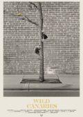 """Постер 1 из 1 из фильма """"Wild Canaries"""" /Wild Canaries/ (2014)"""