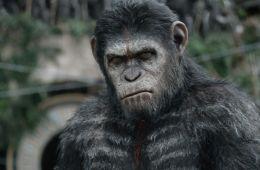 Аве, Цезарь!. На съемках фильма «Планета обезьян: Революция» (Дэн Джолин , Empire)