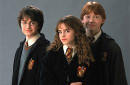 Разбирая Гарри. Тридцать и один факт о «Гарри Поттере» (Александра Махина)