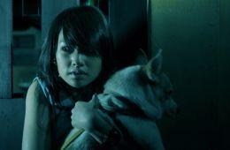 Гонконгский хоррор с привидениями