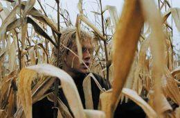 «Том на ферме»
