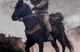 Агенты на конях