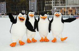 """Фоторепортаж: """"Пингвины Мадагаскара"""": Премьера в Нью-Йорке"""