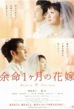 """Постер к фильму """"Апрельская невеста"""" /Yomei 1-kagetsu no hanayome/ (2009)"""