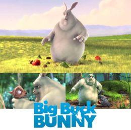 """Постер к фильму """"Большой Бак"""" /Big Buck Bunny/ (2008)"""