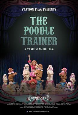 """Постер к фильму """"Дрессировщица пуделей"""" /The Poodle Trainer/ (2010)"""