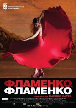 """Постер к фильму """"Фламенко, Фламенко"""" /Flamenco, Flamenco/ (2010)"""