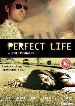 """Постер к фильму """"Идеальная жизнь"""" /Perfect Life/ (2010)"""