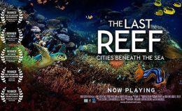 "Постер к фильму ""Последний риф 3D"" /The Last Reef 3D/ (2012)"