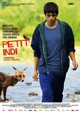 """Постер к фильму """"Маленький индиец"""" /Petit indi/ (2009)"""
