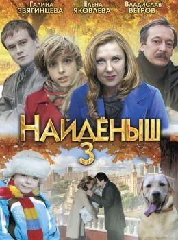 """Постер к фильму """"Найденыш 3"""" (2012)"""