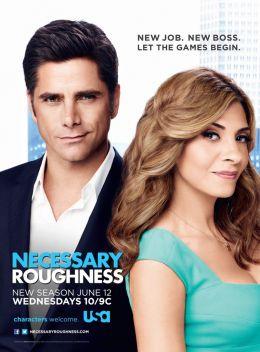 "Постер к фильму ""Необходимая жестокость"" /Necessary Roughness/ (2011)"