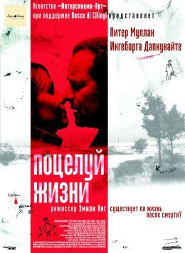 """Постер к фильму """"Поцелуй жизни"""" /Kiss of Life/ (2003)"""