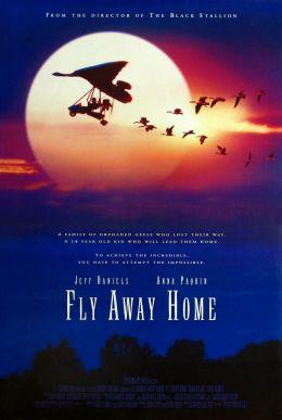 """Постер к фильму """"Летите домой"""" /Fly Away Home/ (1996)"""