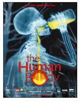 """Постер к фильму """"Человеческое тело"""" /The Human Body/ (2001)"""