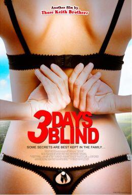 """Постер к фильму """"3 дня слепоты"""" /3 Days Blind/ (2009)"""