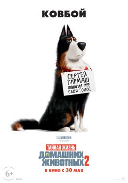 e279ad41b The Secret Life of Pets 2 (2019) - All about the film, reviews ...