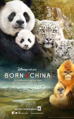 """Постер к фильму """"Рожденный в Китае"""" /Born in China/ (2016)"""