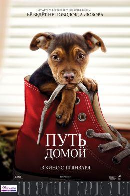 """Постер к фильму """"Путь домой"""" /A Dog's Way Home/ (2019)"""