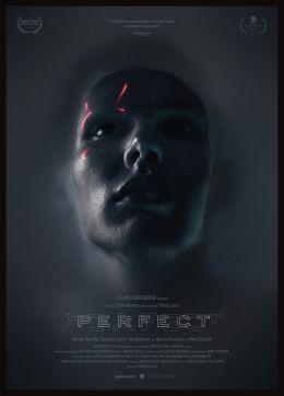 """Постер к фильму """"Perfect"""" /Perfect/ (2018)"""
