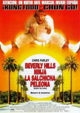 "Постер к фильму ""Ниндзя из Беверли Хиллз"" /Beverly Hills Ninja/ (1997)"