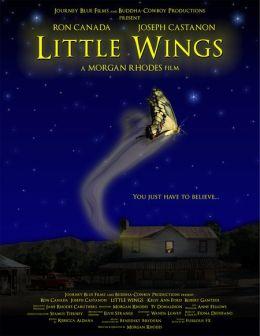 """Постер к фильму """"Маленькие крылья"""" /Little Wings/ (2007)"""