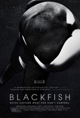 """Постер к фильму """"Черный плавник"""" /Blackfish/ (2013)"""