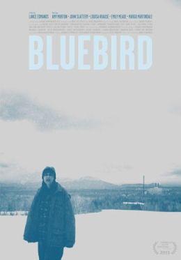 "Постер к фильму ""Bluebird"" /Bluebird/ (2013)"