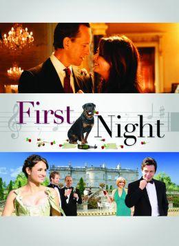 """Постер к фильму """"First Night"""" /First Night/ (2010)"""