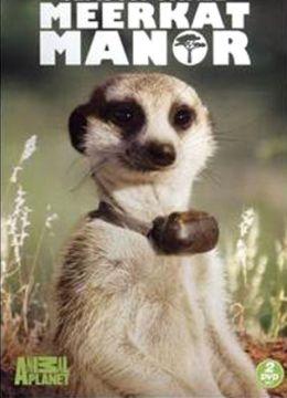 """Постер к фильму """"Поместье сурикатов: Начало истории"""" /Meerkat Manor: The Story Begins/ (2008)"""