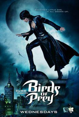 """Постер к фильму """"Хищные пташки"""" /Birds of Prey/ (2002)"""