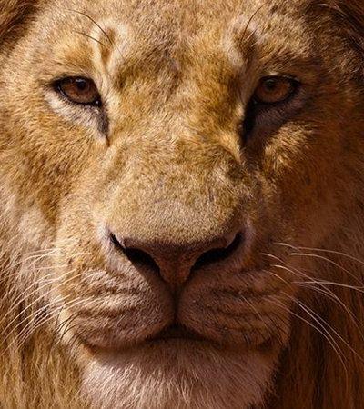 В Сети появились характер-постеры нового «Короля Льва»