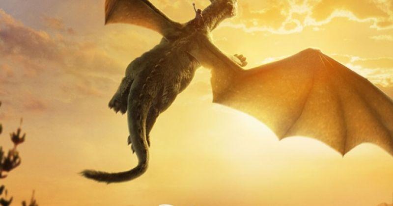развития элиот и его дракон картинки данной