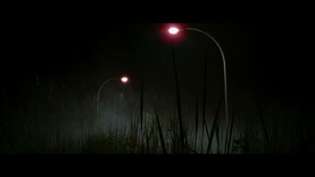 Как поймать монстра Lost River 2 14 - Фильмы - Афиша